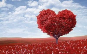 אהבה עצמית, עץ בצורת לב אדום