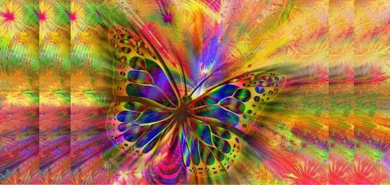 סוגי מדיטציה, פרפר צבעוני על רקע צבעים